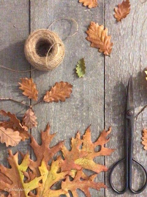 tavolo con foglie