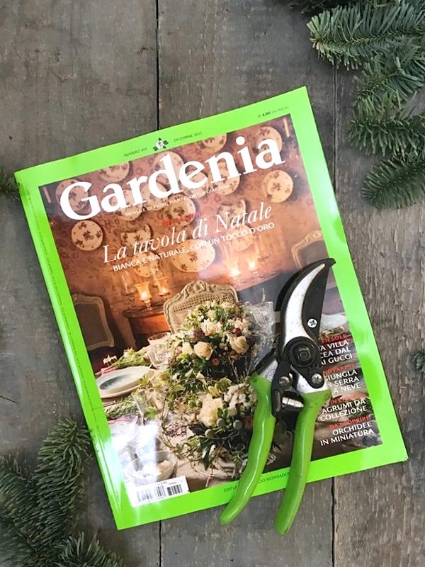 Gardenia dicembre 2017