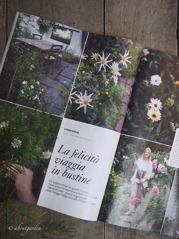 articolo seeds of love s. chiarugi