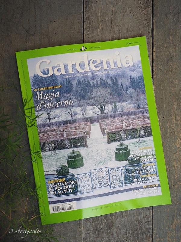 gardenia gennaio 2019 s. chiarugi