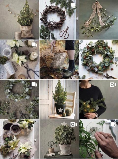 Agraria e Giardinaggio Marinaz Instagram posts